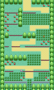 FRBG Route 1.png